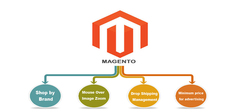 Set up a magento development